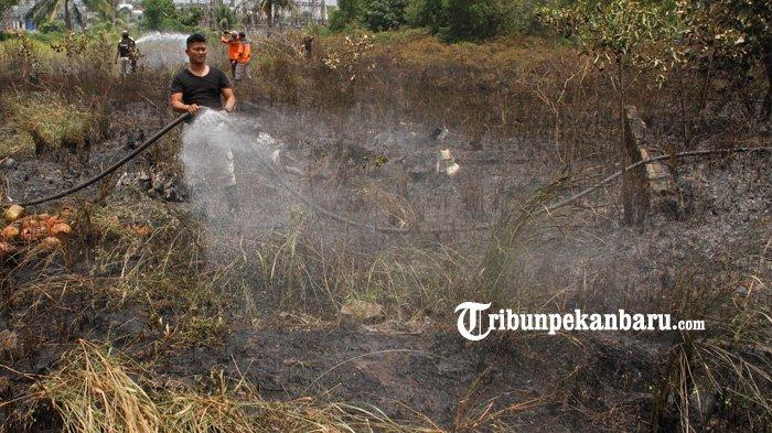 FOTO: Kebakaran Lahan di Jalan Bundo Kandung Pekanbaru - foto_kebakaran_lahan_di_jalan_bundo_kandung_pekanbaru_3.jpg