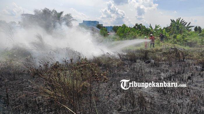 FOTO: Kebakaran Lahan di Pekanbaru, Api Diduga dari Pembakaran Sampah - foto_kebakaran_lahan_di_pekanbaru_api_diduga_dari_pembakaran_sampah_1.jpg