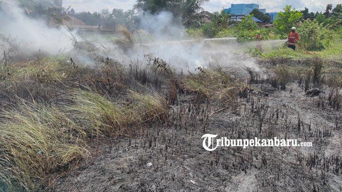FOTO: Kebakaran Lahan di Pekanbaru, Api Diduga dari Pembakaran Sampah - foto_kebakaran_lahan_di_pekanbaru_api_diduga_dari_pembakaran_sampah_3.jpg