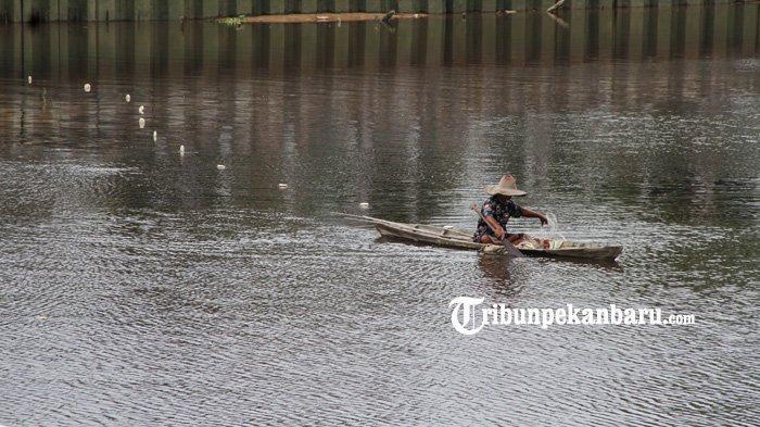 FOTO: Menjaring Ikan di Sungai Siak Pekanbaru - foto_menjaring_ikan_di_sungai_siak_pekanbaru_3.jpg