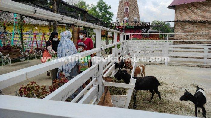 FOTO: Objek Wisata di Pekanbaru Kembali Dibuka - foto_objek_wisata_di_pekanbaru_kembali_dibuka_2.jpg