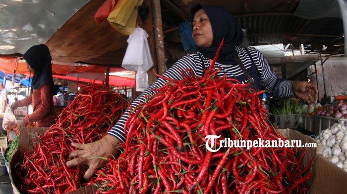 Cabai di Pekanbaru Masih Tinggi Capai Rp 90 Ribu, Kepala DPP Kota Ungkap Penyebabnya