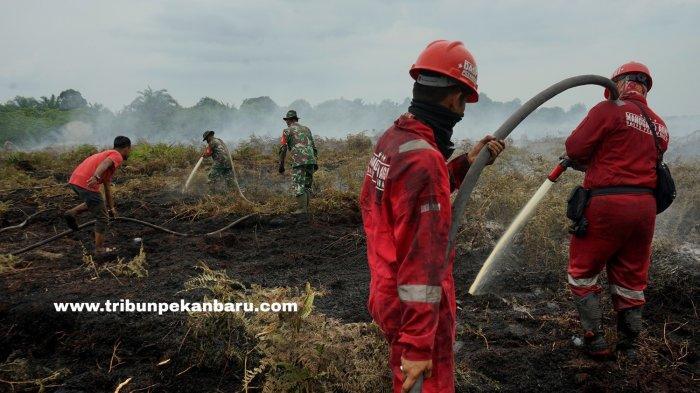 FOTO: Pemadaman Karhutla di Riau - foto_pemadaman_karhutla_di_riau_1.jpg