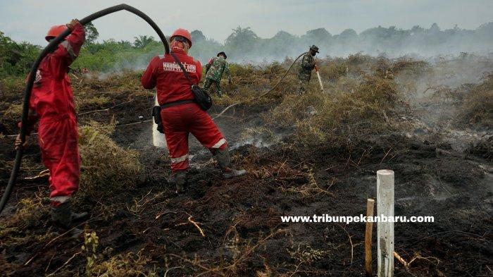 FOTO: Pemadaman Karhutla di Riau - foto_pemadaman_karhutla_di_riau_2.jpg