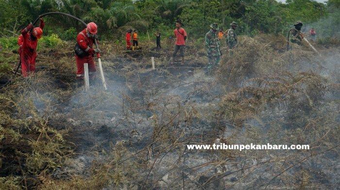 FOTO: Pemadaman Karhutla di Riau - foto_pemadaman_karhutla_di_riau_3.jpg