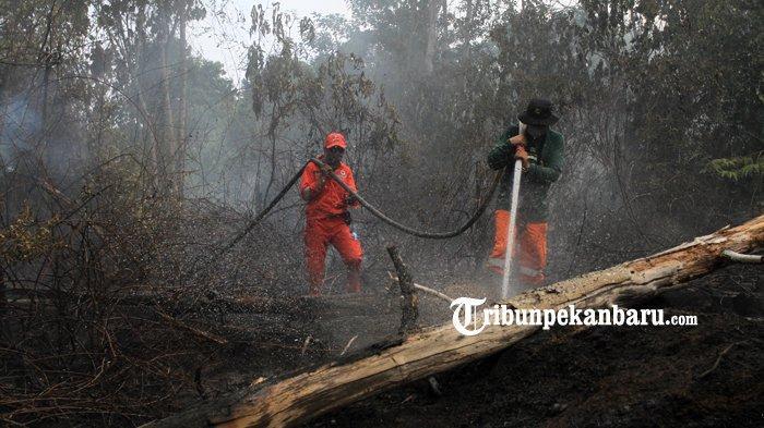 BREAKING NEWS: Pemprov Dorong 2 Kabupaten Kota Tetapkan Status Siaga Karhutla di Riau