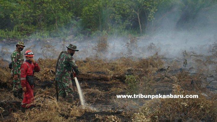 FOTO: Pemadaman Kebakaran di Lahan Gambut Desa Rimbo Panjang Kampar - foto_pemadaman_kebakaran_di_lahan_gambut_desa_rimbo_panjang_kampar_1.jpg