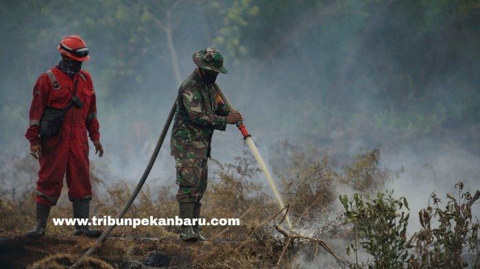FOTO: Pemadaman Kebakaran di Lahan Gambut Desa Rimbo Panjang Kampar - foto_pemadaman_kebakaran_di_lahan_gambut_desa_rimbo_panjang_kampar_2.jpg