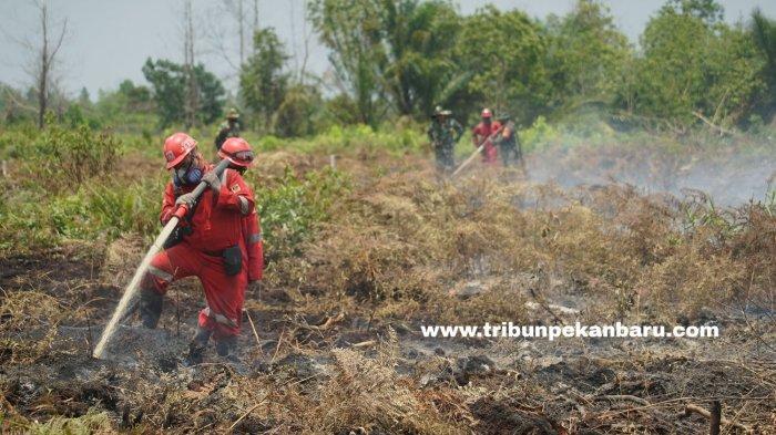 FOTO: Pemadaman Kebakaran di Lahan Gambut Desa Rimbo Panjang Kampar - foto_pemadaman_kebakaran_di_lahan_gambut_desa_rimbo_panjang_kampar_3.jpg