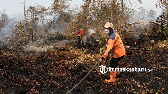 FOTO: Pemadaman Kebakaran Lahan di Jalan Beringin Payung Sekaki Pekanbaru - foto_pemadaman_kebakaran_lahan_di_jalan_beringin_payung_sekaki_pekanbaru_3.jpg