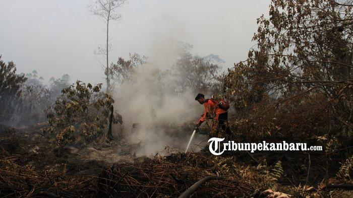 FOTO: Pemadaman Kebakaran Lahan di Jalan Beringin Payung Sekaki Pekanbaru - foto_pemadaman_kebakaran_lahan_di_jalan_beringin_payung_sekaki_pekanbaru_4.jpg