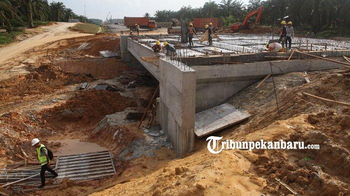 FOTO: Pembangunan Underpass Perlintasan Gajah di Jalan Tol Pekanbaru - Dumai - foto_pembangunan_underpass_perlintasan_gajah_di_jalan_tol_pekanbaru_-_dumai_1.jpg