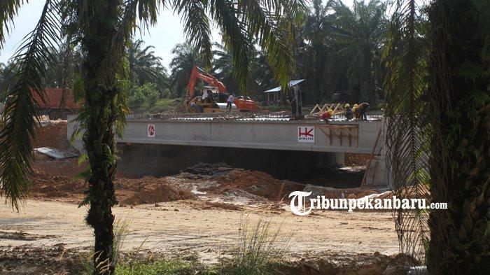 FOTO: Pembangunan Underpass Perlintasan Gajah di Jalan Tol Pekanbaru - Dumai - foto_pembangunan_underpass_perlintasan_gajah_di_jalan_tol_pekanbaru_-_dumai_2.jpg