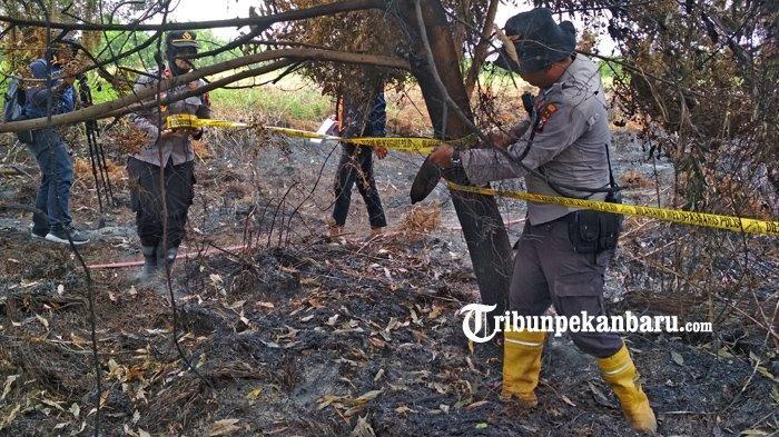 FOTO: Polsek Rumbai Pekanbaru Pasang Garis Polisi di Lokasi Karhutla - foto_polsek_rumbai_pekanbaru_pasang_garis_polisi_di_lokasi_karhutla_1.jpg