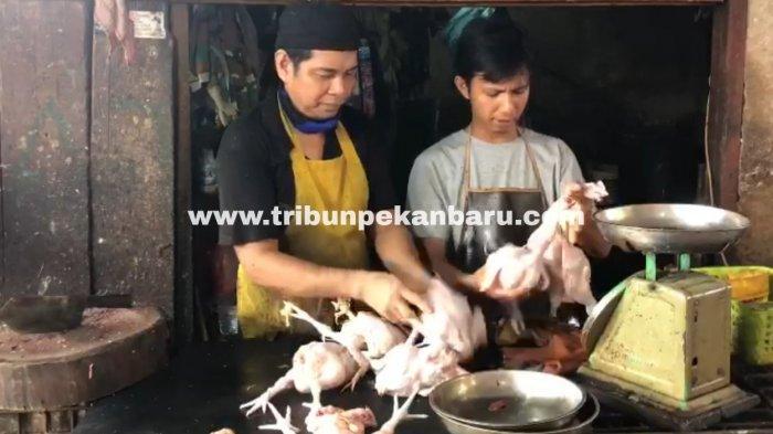 FOTO: Sehari Menjelang Ramadhan Harga Ayam Potong Capai 34 Ribu - foto_sehari_menjelang_ramadhan_harga_ayam_potong_capai_34_ribu_1.jpg