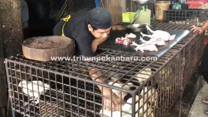 FOTO: Sehari Menjelang Ramadhan Harga Ayam Potong Capai 34 Ribu - foto_sehari_menjelang_ramadhan_harga_ayam_potong_capai_34_ribu_2.jpg