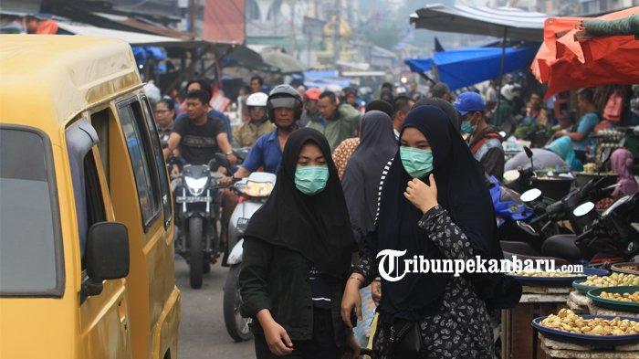 Februari 2020 Diprediksi Musim Kemarau, Warga Harap Riau Bebas Karhutla, Tak Ada Lagi Kabut Asap