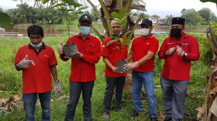 Fraksi PDI-P DPRD Pekanbaru Turun Tanam Pohon di Tepi Sungai Siak Sempena HUT ke-48 PDI-P