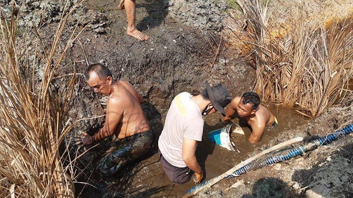 Gali Embung Cari Air Pakai Alat Seadanya di Terik Matahari,Pemadaman  Karhutla di Kepulauan Meranti