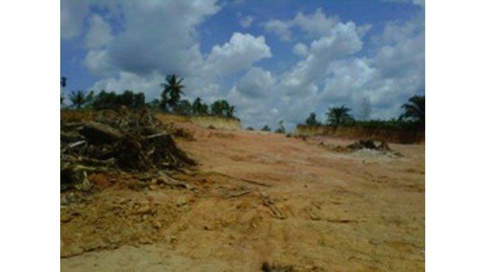 Rusak Lingkungan, Bupati Syamsuar Minta Aktivitas Galian C Dihentikan