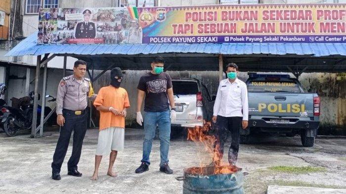 Ganja Asal Aceh Hasil Tangkapan Polsek Payung Sekaki Pekanbaru Dimusnahkan dengan Cara Dibakar