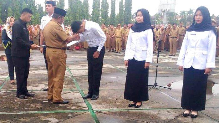 Beredar Surat Pemanggilan CPNS ke BKD Riau Senin Besok, BKD Riau : Jangan Percaya Itu Surat Palsu