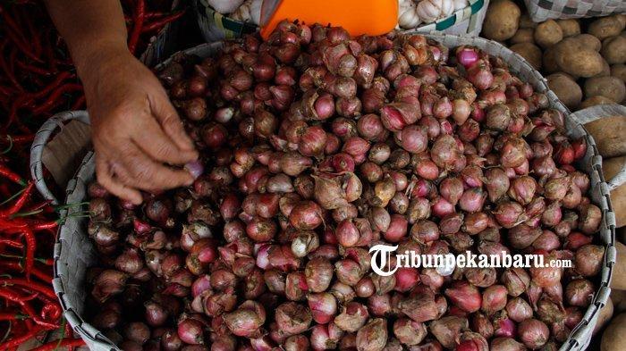 FOTO : Harga Bawang Merah di Pekanbaru Capai Rp 50 Per Kg - harga-bawang-merah-di-pekanbaru-ok.jpg