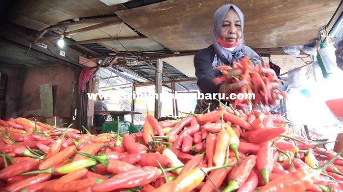 FOTO : Harga Cabai Rawit Merah di Pekanbaru Turun Drastis - harga-cabai-setan-turun-di-pekanbaru.jpg