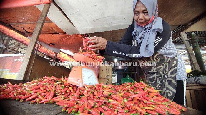FOTO : Harga Cabai Rawit Merah di Pekanbaru Turun Drastis - harga-cabai-setan-turun-drastis.jpg