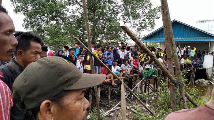 BREAKING NEWS: Masuk Pemukiman, Harimau Sumatera Terjebak di Antara Ruko di Inhil, Masyarakat Heboh
