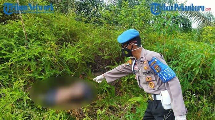 HEBOH Mayat Wanita Tanpa Kepala dan Kaki Ditemukan di Tepi Jalan di Riau, Diduga Korban Mutilasi