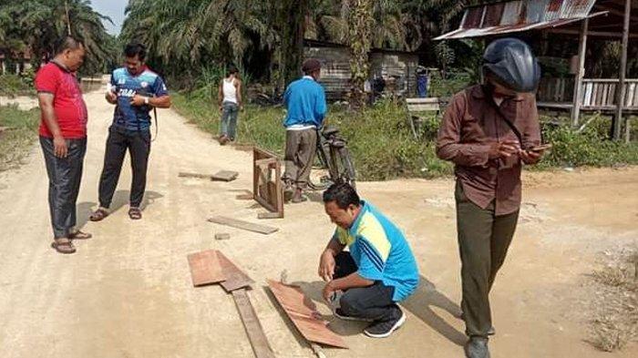 TERUNGKAP Oleh Tim BBKSDA, Jejak Harimau Sumatera di Desa Petala Bumi adalah Jejak Harimau Dewasa