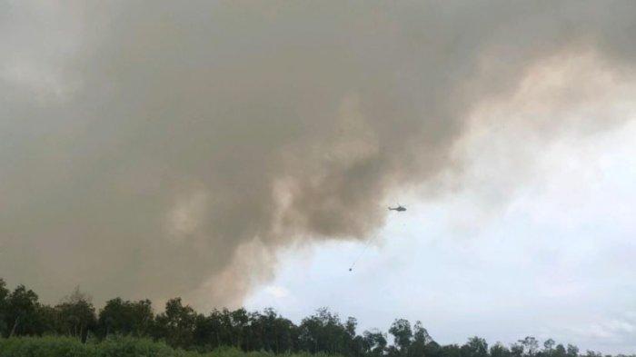 Asap Gambut Terbakar di Cagar Biosfer Giam Siak Kecil Belum Hilang, Tim Gabungan Masih Berjibaku