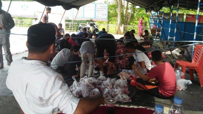 Kebutuhan Hewan Kurban di Pelalawan Idul Adha 2020 Menurun 20 Persen, Ini Rinciannya