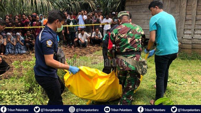 HILANG Beberapa Hari, Ibu Muda di Riau Ditemukan Tewas Bersimbah Darah di Rumah Ladang Warga