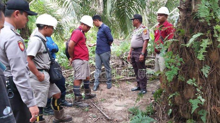 IBU MUDA di Riau Dibegal dan Diikat di Kebun Kelapa Sawit, Awalnya Pelaku Tuduh Korban Bawa Narkoba