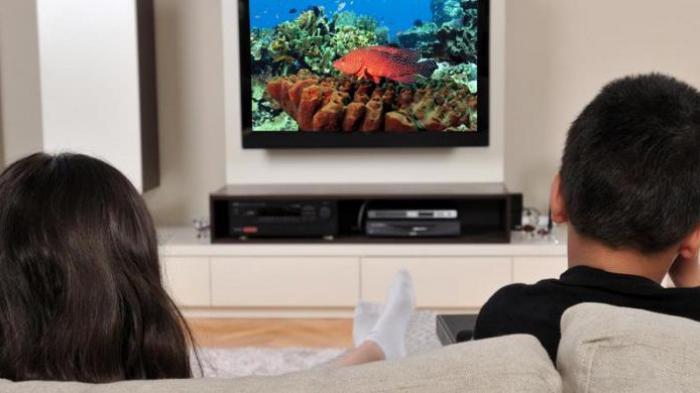 Masyarakat Indonesia Diminta Hentikan Siaran TV Analog, Ini Cara Migrasi TV Analog ke TV Digital