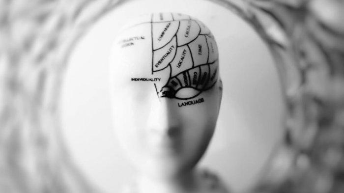 Ini Asupan Gizi dan Vitamin untuk Kesehatan Otak, Perhatikan Pola Makan Anda