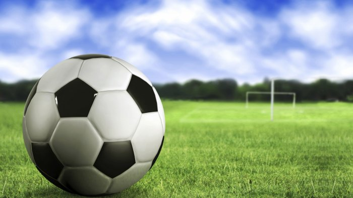 Mengulik Sejarah Piala Dunia dan Nasib Nona-nona Gila Bola