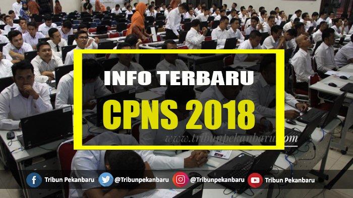 BKPP Rohul Terima 352 Berkas Pelamar CPNS 2018, Pelamar Dokter Masih Minim