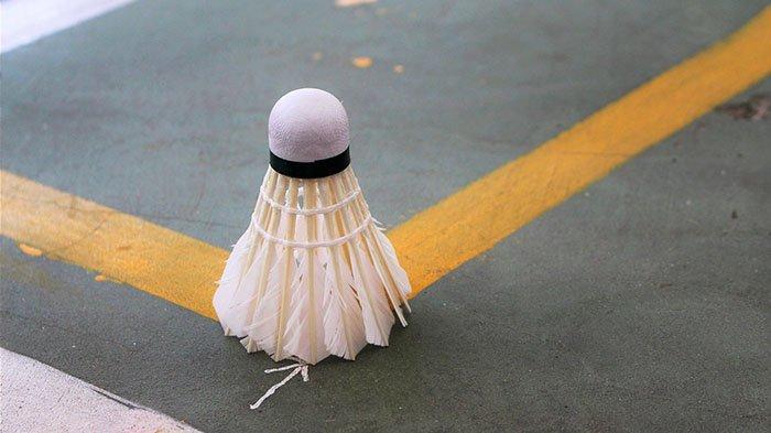 Kemenangan Greysia- Apriyani Dipastikan Lewat Teknologi Hawkeye, Apa Itu Hawkeye dalam Badminton