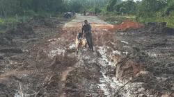 Pembangunan Jalan Lingkar, Bappeda Pelalawan Sebut Proses Pembersihan DMJ Diurus Camat dan Lurah