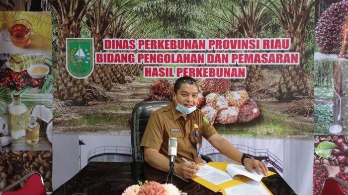 Harga Bokar Tingkat Petani di Kabupaten dan Kota di Riau Bervariasi,Kopra,Pinang hingga Sagu Stabil