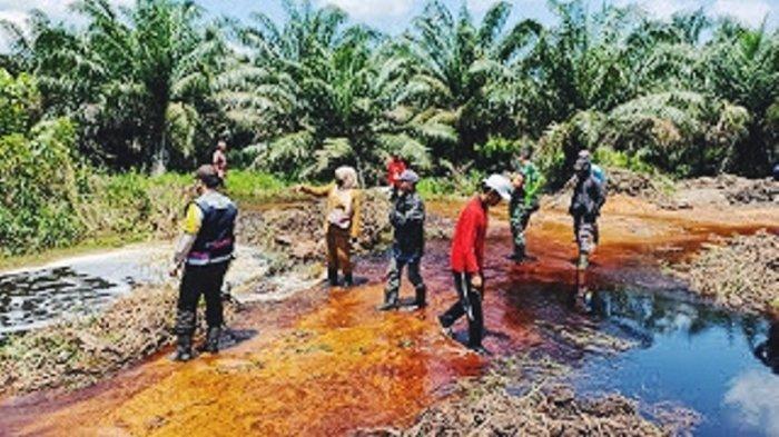 Kanal Perusahaan Jebol, Lahan Masyarakat di Batang Tuaka Inhil Terendam Tidak Bisa Tanam Padi