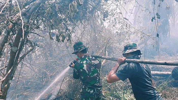 Terpantau 68 Titik Api di Inhil Riau Sejak Awal Tahun, Paling Banyak di Kecamatan Kateman