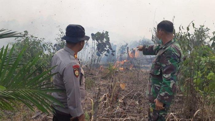 Api Masih Menyala, Ratusan Hektar Lahan di Hutan Lindung Bukit Betabuh Kuansing Riau Terbakar