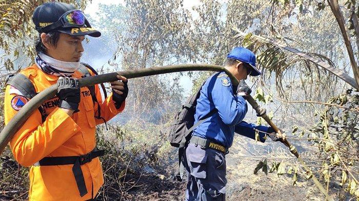 Jarak Tempuh Jauh, Api di Kuala Kampar Belum Padam, Sudah 3 Hari Pemadaman Karhutla di Pelalawan