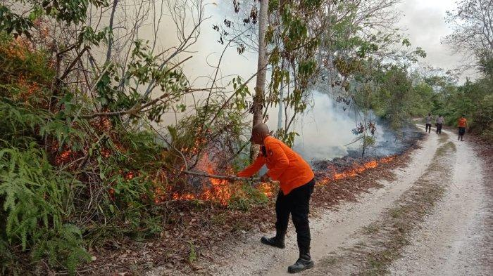 Karhutla di Kampar, Kawasan Sungai Hijau Dikepung Kebakaran Lahan