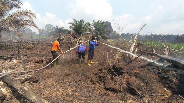 Pemadaman dilakukan tim gabungan di tiga titik Karhutla Bengkalis, Senin (10/8) kemarin.