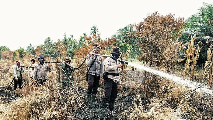 2 Ha Karhutla di Inhil Bikin Petugas Kelabakan Padamkan Api di Gambut, Berhasilkan Upaya Petugas?